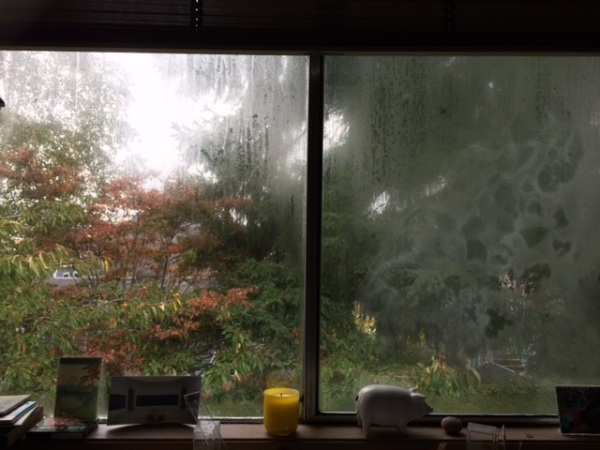 A foggy window in Seattle town